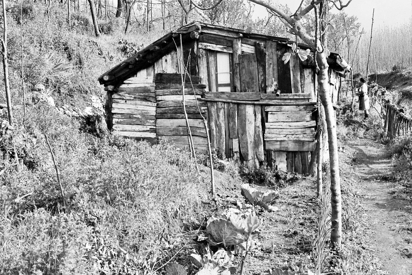 Tipologia di ricovero rurale 5